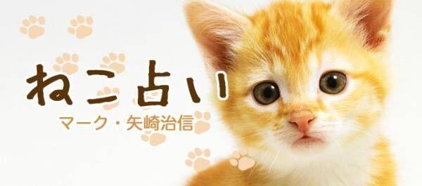 マーク矢崎先生の【ねこ占い】2018年4月の運勢
