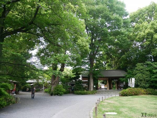 かわいいブレスレッド型♡阿佐ヶ谷神明宮のお守り「神むすび」が大人気