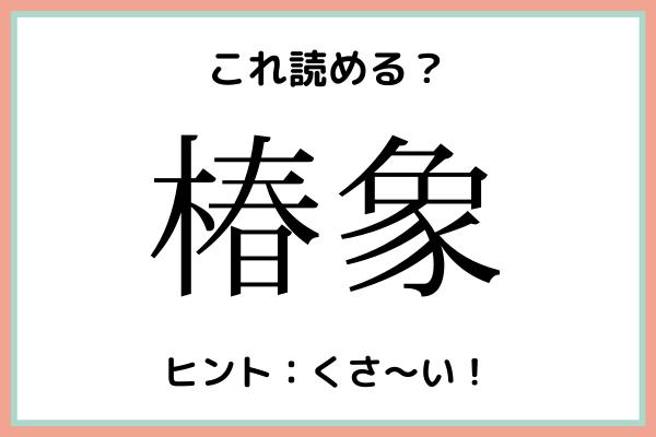 「椿象」=「つばきぞう」じゃないの…?読めたらスゴイ!《難読漢字》4選