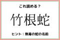 「竹根蛇」=「たけねへび」…?読めたらスゴイ!《難読漢字》4選