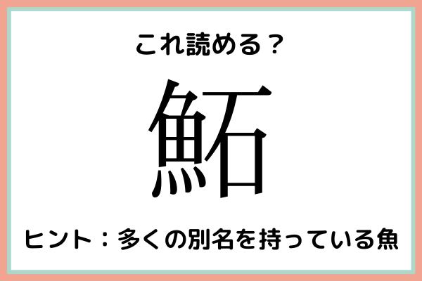 「鮖」って何て読む?大人なら知っておきたい魚の《難読漢字》