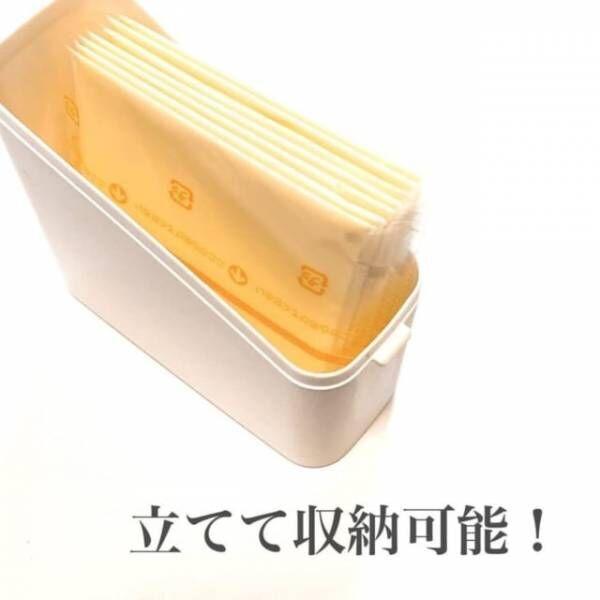 セリアのチーズケース