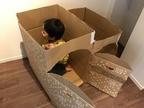 【段ボール工作アイデア】家!迷路!懐かしのびっくり箱を子供と一緒に作ってみた