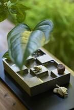 いつもの部屋に小さな庭園が現れる、花器「市松庭園」が、9月1日発売