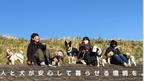 「犬飼ができるSDGs11の目標への取り組み」 ~地域の方からも愛される犬にするためのクラウドファンディングを実施~