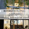 """オープンから2週間でインスタフォロワー2,500人超!""""安心して預けられる""""話題のトリミングサロン「pofuri(ぽふり)」横浜市都筑区にオープン!"""