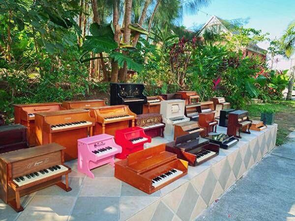 『100台のトイピアノ展 -秘密の森の庭のシアターコンサート-』11月6日(土)・7日(日)Le CAVE STUDIO SHIBUYAにて開催
