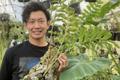 世界唯一のアリ植物農場を作りたい!アリ植物農家がクラウドファンディングを実施中